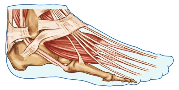 Side foot pain
